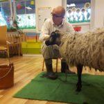 Pan Baran i Pani Owca